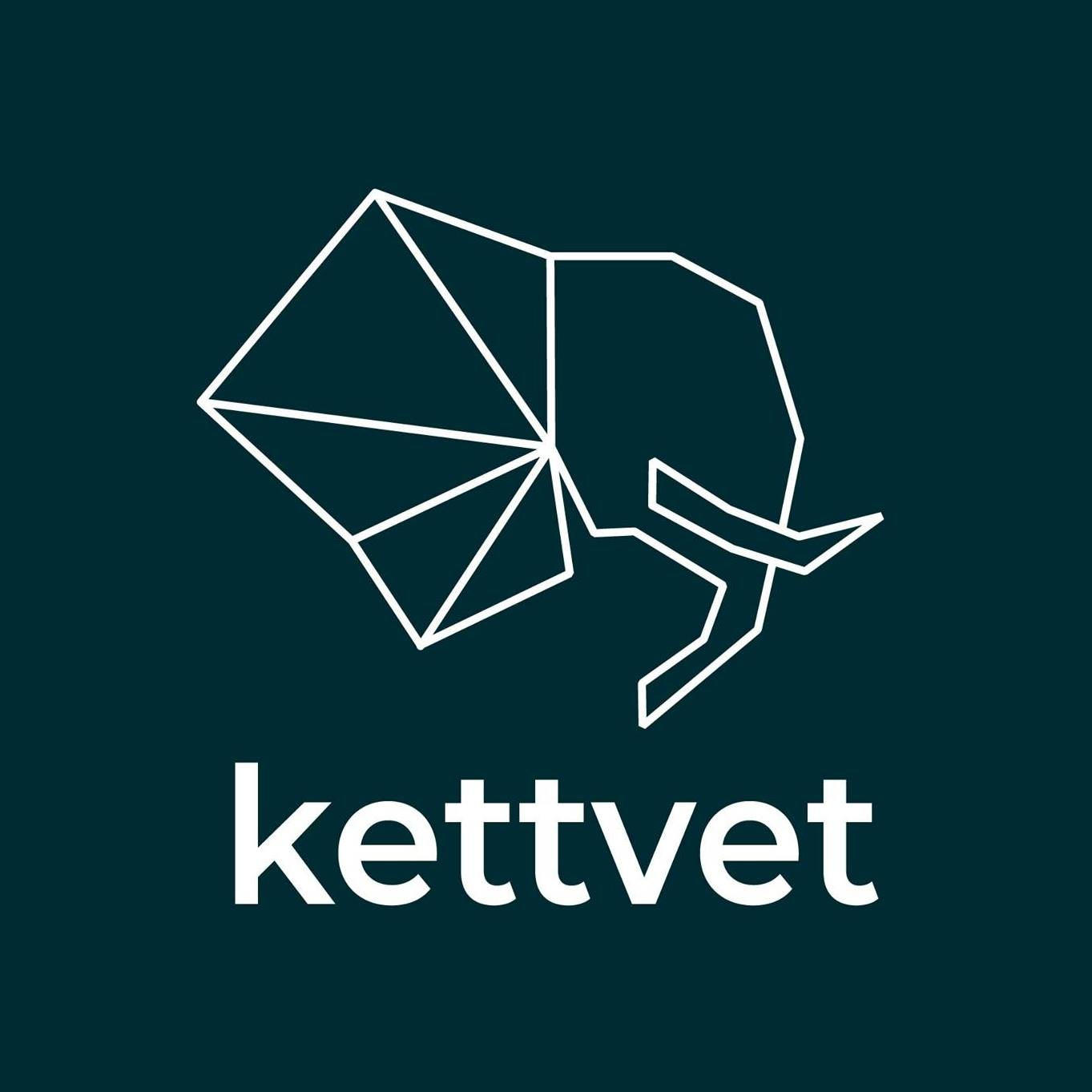cropped-Logo-kettvet-01-scaled-1